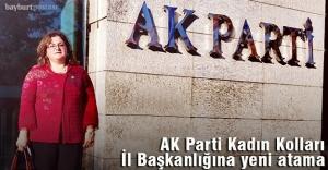 AK Parti Bayburt Kadın Kolları İl...