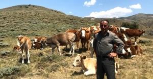 Kayıp hayvanlar, Drone ile bulundu