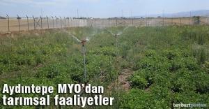 Bayburt Üniversitesi Tarımsal Faaliyetlerine Devam Ediyor