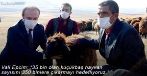 """Epcim: """"Küçükbaş Hayvan Sayısını 350 Binlere Taşımayı Hedefliyoruz"""""""