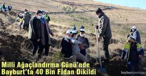 Milli Ağaçlandırma Günü'nde Bayburt'ta 40 Bin Fidan Dikildi