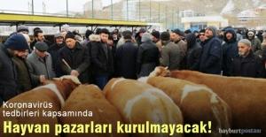 Bayburt'ta hayvan pazarları kurulmayacak!