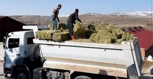 Bayburtlu çiftçilerin Yusufeli'ne desteği sürüyor