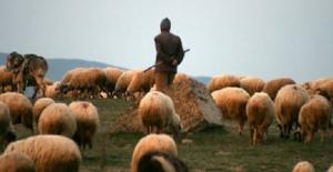 Bayburt'ta 15 çobana sertifika verildi