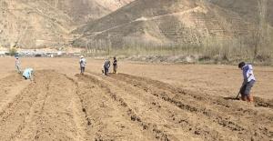 Bayburt Üniversitesi'nde Organik Tarım Faaliyetleri