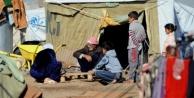 Bakanlık açıkladı: İl il Suriyeli sayısı