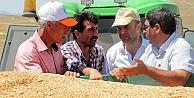 Bayburt tarımı kuraklıktan etkilendi mi?