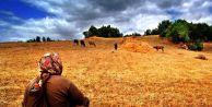 Bayburt tarımına uluslararası destek!