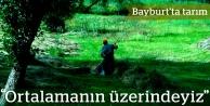 Bayburt'a en büyük katkı tarımdan