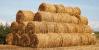 Bayburtlu çiftçiler, ithal samanla yarışıyor!