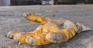 Düzce'de iş kazası: 1 ölü