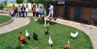 Hayvanat bahçesi eğitim başarısını artırdı