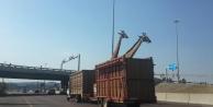 Kamyonla taşınan zürafa kafasını köprüye çarparak öldü