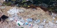 Mogan Gölü'ndeki kirlilik dikkat çekiyor