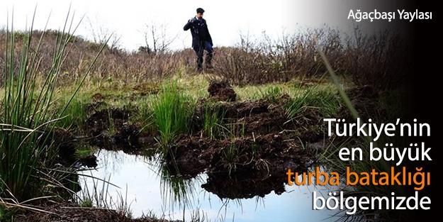 Türkiye'nin en büyük turba bataklığı korunmaya alınacak