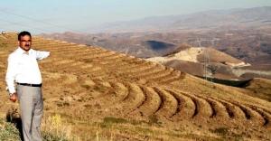 Kop Dağı 340 Bin fidanla yeşillendirilecek