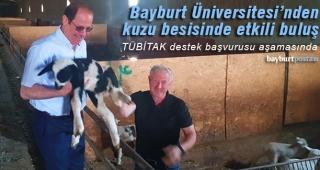 Bayburt Üniversitesi'nden kuzu besisinde etkili buluş