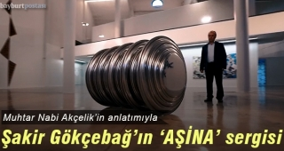 Muhtar Nabi Çelik, Şakir Gökçebağ'ın 'AŞİNA' sergisini anlatıyor